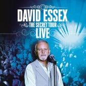 The Secret Tour (Live) by David Essex