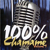 Play & Download 100% Chamamé - Volume 1 by Grupo Estilo Nativo | Napster