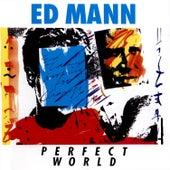Perfect World by Ed Mann