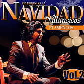 Celebrando la Navidad Vol. 2. Villancicos Flamencos by Various Artists