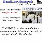 Play & Download Wings of a Dove (feat. the Heavenly Stars of Pensacola) by John Holt   Napster