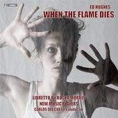 Hughes: When the Flame Dies by Edward Grint