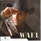 Play & Download Bihinn by Wael Kfoury | Napster
