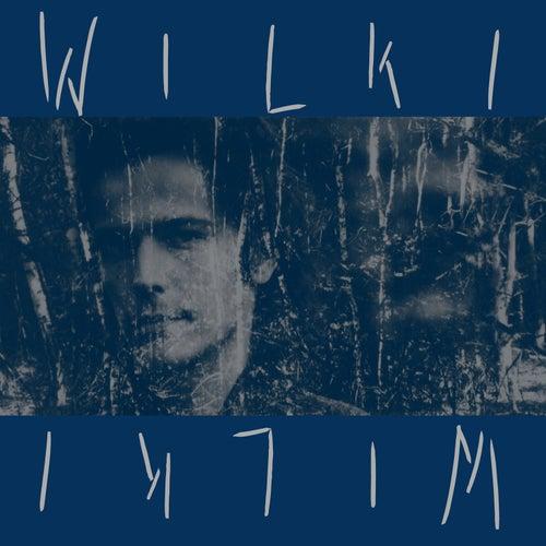 Play & Download Wilki (Specjalna, Dwupłytowa Edycja) by Wilki | Napster