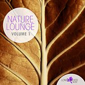 Play & Download Nature Lounge by Various Artists | Napster