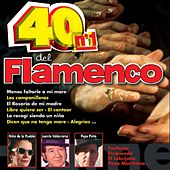 Play & Download 40 No. 1 del Flamenco by Various Artists | Napster