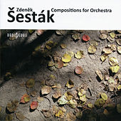 Play & Download Zdeněk Šesták - Composition for Orchestra by Various Artists | Napster