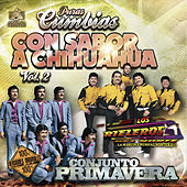 Play & Download Puras Cumbias Con Sabor a Chihuahua, Vol. 2 by Various Artists | Napster