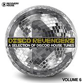 Disco Revengers, Vol. 6 - Discoid House Selection by Various Artists