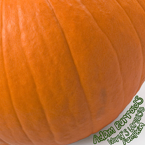 Play & Download World's Largest Pumpkin by Adam Burrows | Napster
