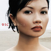 Play & Download Beautiful Collision by Bic Runga | Napster