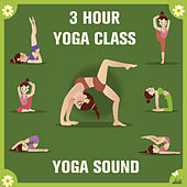 Play & Download 3 Hour Yoga Class: Meditative World Fusion Music by Yoga Sound | Napster