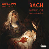 J.S.Bach, Solo Cantatas for Bass by Various Artists