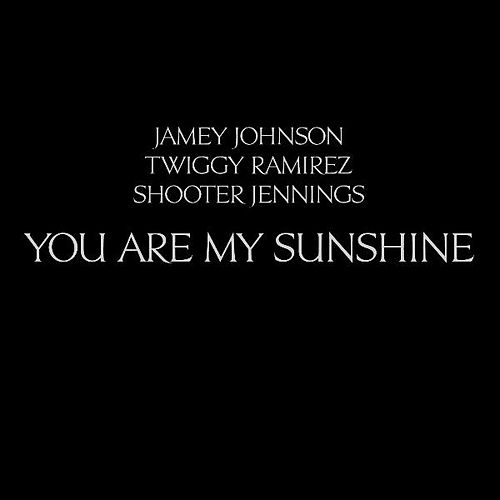 You Are My Sunshine by Twiggy Ramirez Jamey Johnson