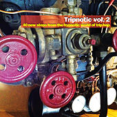 Tripnotic, Vol. 2 (40 New Steps from the Hypnotic World of Trip Hop) by Various Artists