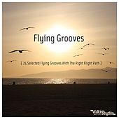 Flying Grooves - 25 Selected Flying Grooves With the Right Flight Path by Various Artists