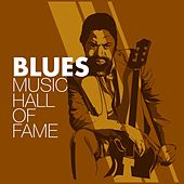 Play & Download Blues Music Hall of Fame by Various Artists | Napster