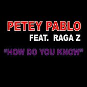 Play & Download How Do You Know (feat. Raga Z) by Petey Pablo | Napster