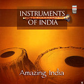 Amazing India by Various Artists