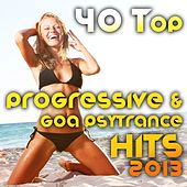 40 Top Progressive & Goa Psytrance Hits 2013 (Best of Tech House, Acid House, Tech Trance, Morning) by Various Artists