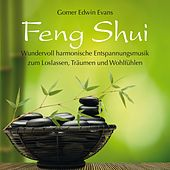 Play & Download FENG SHUI : Harmonische Entspannungsmusik by Gomer Edwin Evans | Napster