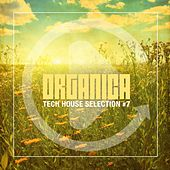 Play & Download Organica, Vol. 7 by Various Artists | Napster