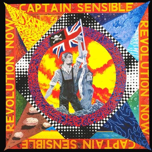 Revolution Now by Captain Sensible
