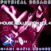 Physical Dreams House Collection, Vol. 4 by Physical Dreams
