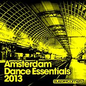 Play & Download Amsterdam Dance Essentials 2013 - EP by Various Artists | Napster
