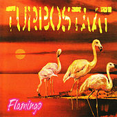 Flamingo (Bonustrack Version) by Turbostaat