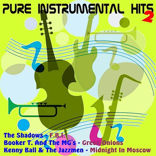 Pure Instrumental Hits, Vol.2 by Various Artists
