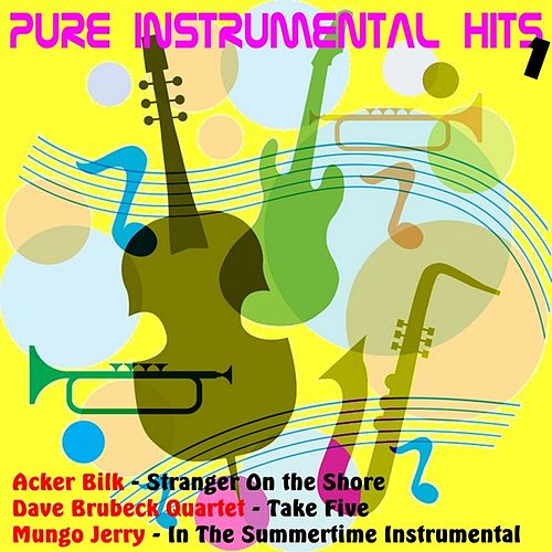 Play & Download Pure Instrumental Hits, Vol.1 by Various Artists | Napster