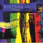 Play & Download Livro by Caetano Veloso | Napster