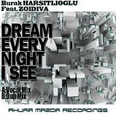 Dream Every Night I See (feat. ZoiDiva) by Burak Harsitlioglu