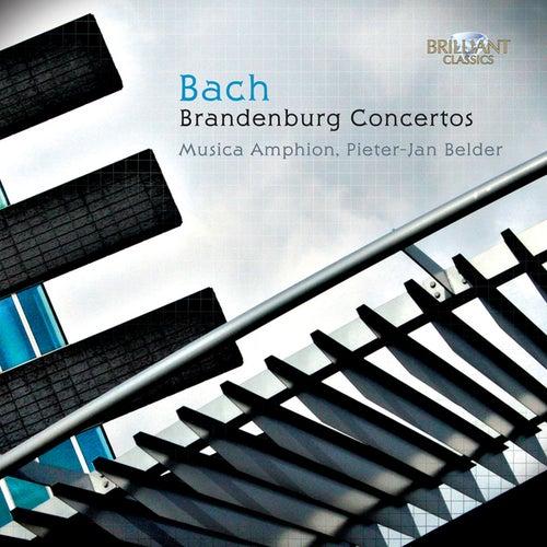 Bach: Brandenburg Concertos by Musica Amphion