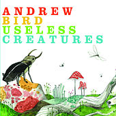 Useless Creatures von Andrew Bird