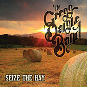Play & Download Seize the Hay by The Gregg Daigle Band | Napster