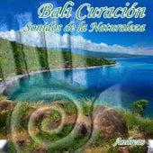 Play & Download Bali Curación Sonidos de la Naturaleza by Andreas | Napster