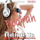 Booyah: Tribute to Michael Bublé, Showtek by Various Artists