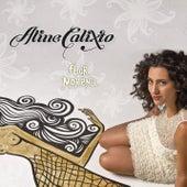 Flor Morena von Aline Calixto