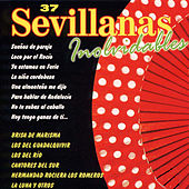 Play & Download 37 Sevillanas Inolvidables by Various Artists | Napster