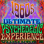 1960's Ultimate Psychedelic Experience, Vol. 2 by Various Artists