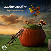 Play & Download Nachtwandler, Vol. 5 - Deep Electronic House by Various Artists | Napster
