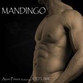 Mandingo by Aron Prince