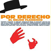 Play & Download Por Derecho el Mejor Flamenco by Various Artists | Napster