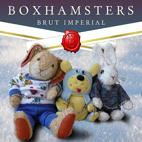 Brut Imperial by Boxhamsters