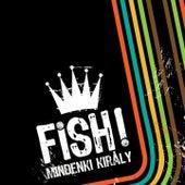 Play & Download Mindenki Király by Fish | Napster