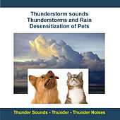 Play & Download Thunderstorm Sounds - Thunderstorms and Rain - Desensitization of Pets by Rettenmaier | Napster