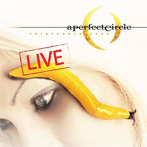 Thirteenth Step - Live by A Perfect Circle