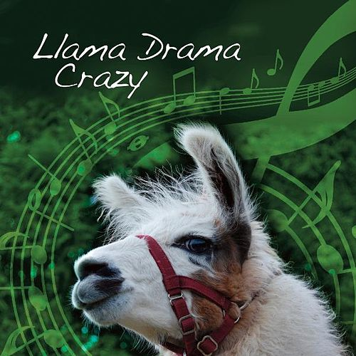 Play & Download Llama Drama Crazy (feat. Nidderdale Llamas) by Ade Payne | Napster
